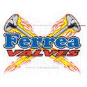 Ferrea Valves